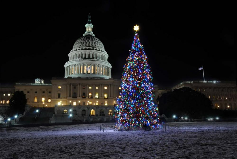 Capitol Christmas Tree.2018 U S Capitol Christmas Tree Tour Route Map Sweet